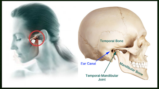 Jaw Pain And Chiropractic Do You Have A Tmj Disorder